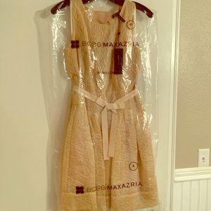 NWT BCBG Delphine Dress. A-line, Champagne!